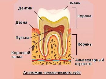 набор для отбеливания зубов white